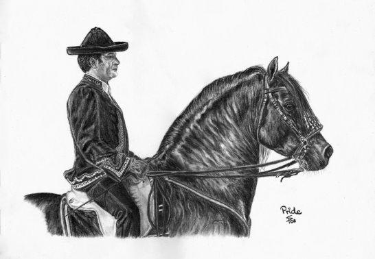 Spanish P.R.E. stallion and rider