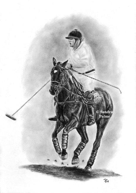 Polo Pony Charcoal