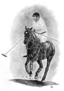 Polo pony and rider